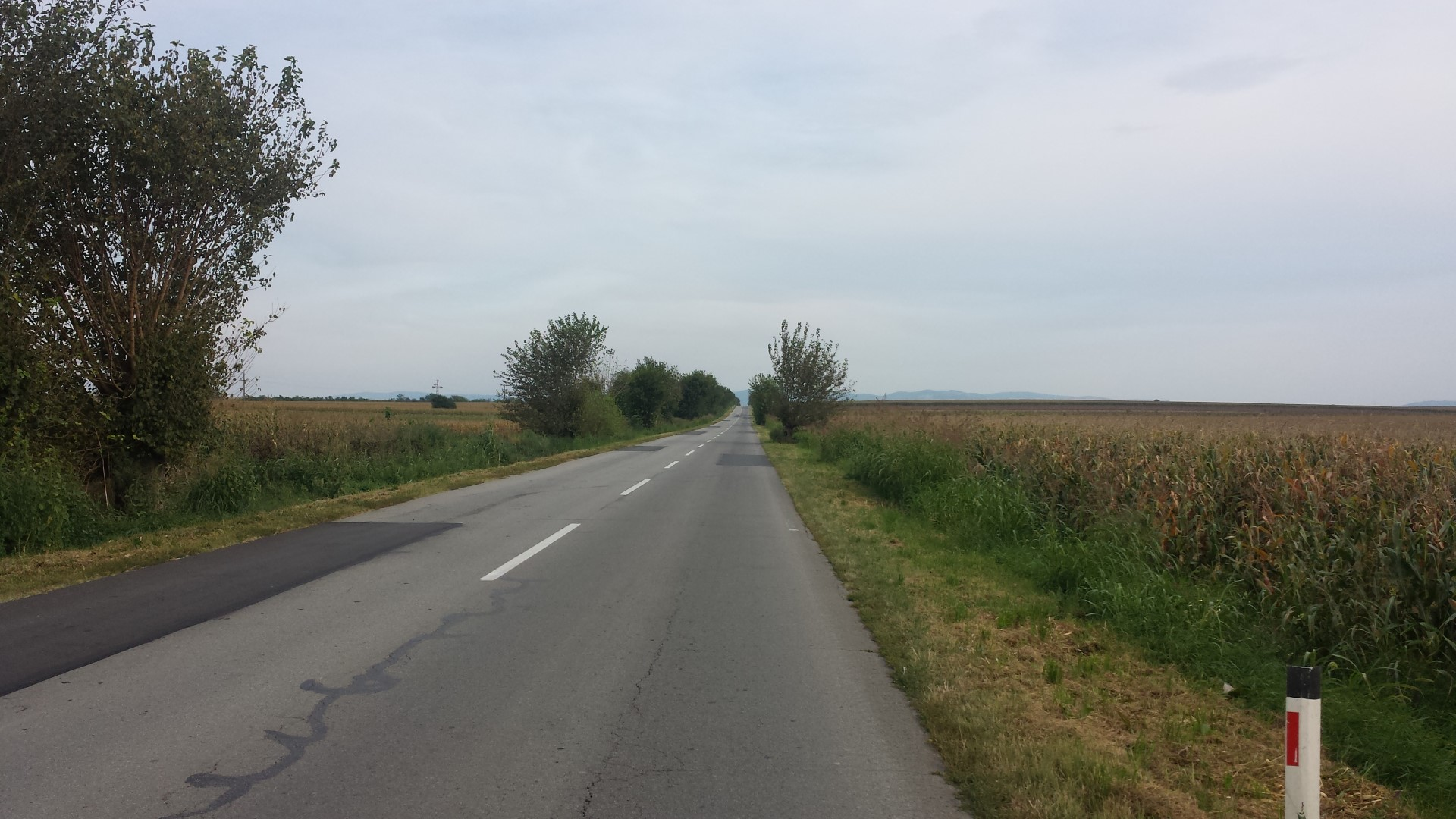 Cycling in strong wind towards Bela Crkva